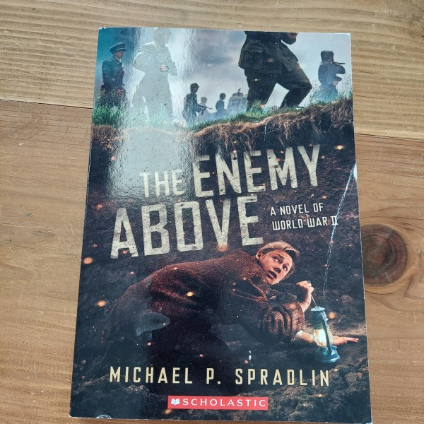 Enemy Above: Novel of World War 2