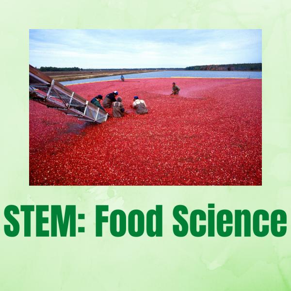 STEM: Food Science! Thursday November 18 1 to 2:30