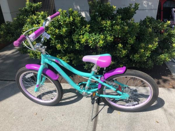 Schwinn Sunnyside 20 Cruiser Bicycle