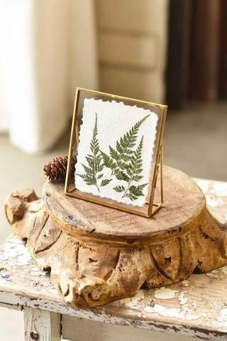 EW37043 Floating Frames | Fine Leaf Fern
