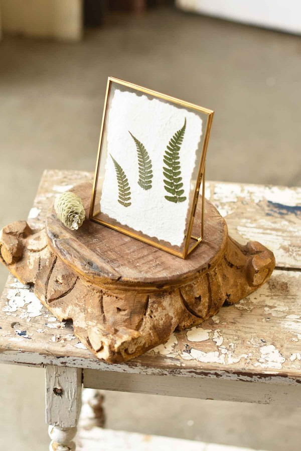 EW37041 Floating Frames | Forest Fern