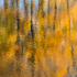 Fall Reflection by Donald Schoenleber (Photography)