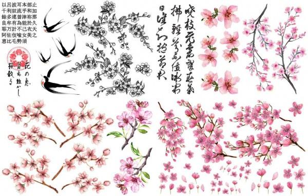 Cherry Blossoms Transfer