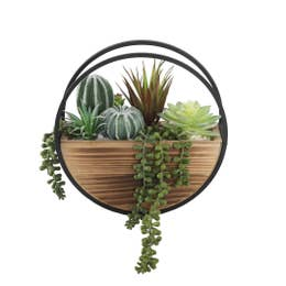 Plants, Garden, & Farm