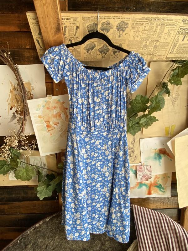 CAPULET Blue White Floral Buttonfront Dress
