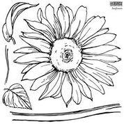 IOD-S  Sunflowers Decor Stamps