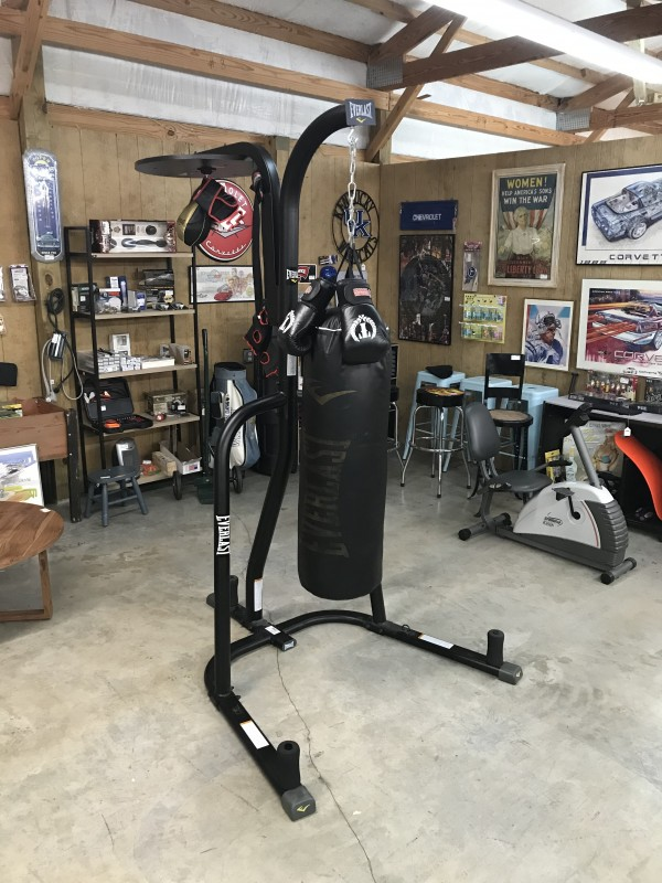 Everlasting Powercore Dual Bag, Stand, & Gloves