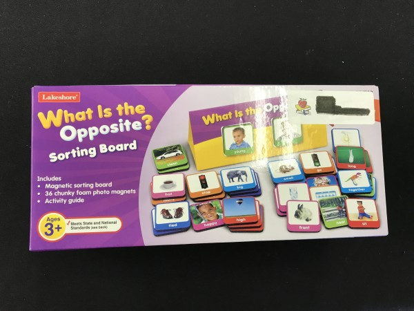 What Is the Opposite? Sorting Board