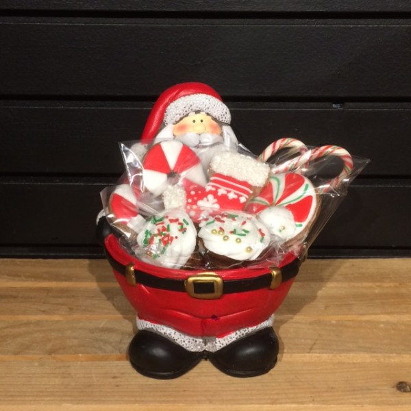 Horse Cookies - Santa Bowl w/ Xmas Treats: 9 Pack - Pony Nuggets